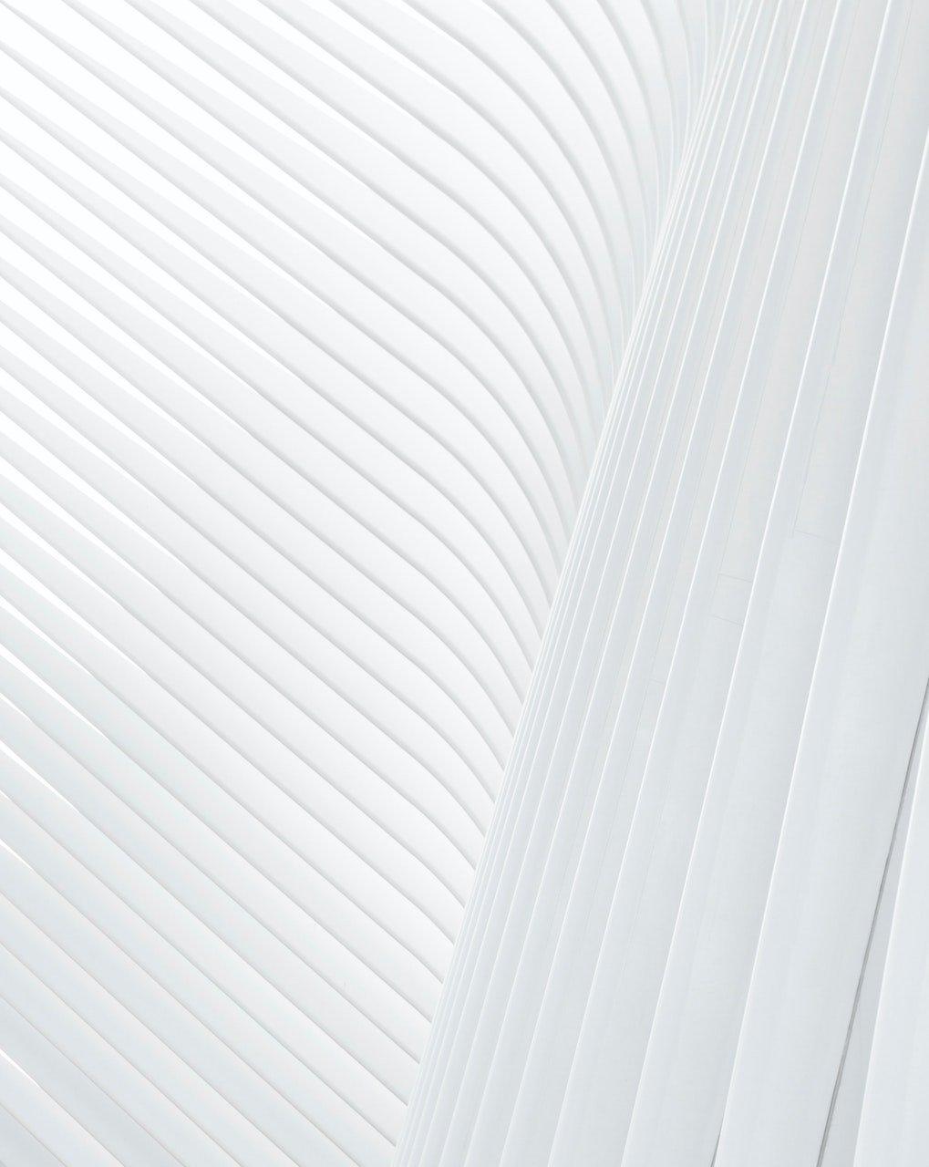 sfondo bianco 3 2
